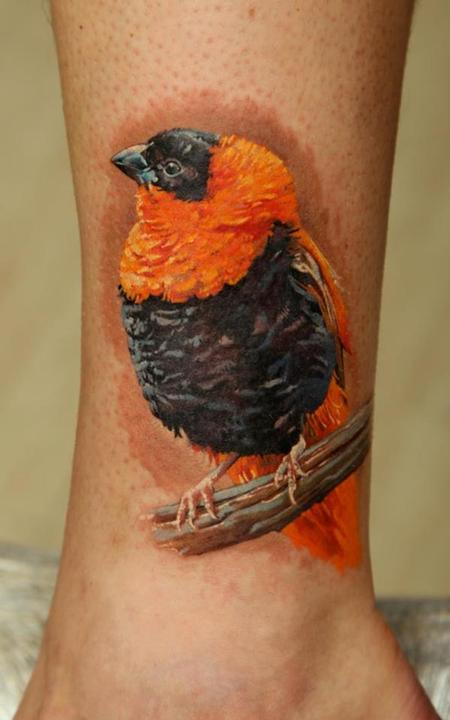 tattoos/ - African Bird - 63851